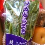 「ざおうさま」ゆるキャラグッズとお米と野菜など~宮城県蔵王町のふるさと納税特産品(H26)