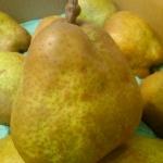 甘ーい香りのラフランス5kg~山形県東根市のふるさと納税特産品(H26)