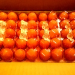 卵50個+カステラ+マヨネーズなど~兵庫県市川町のふるさと納税特産品(H26)