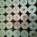 怒涛のトイレットペーパー100個~静岡県富士市のふるさと納税特産品(H27)